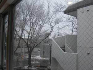 雪CIMG2470