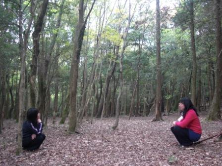 森を低い目線で