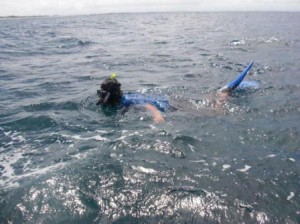 沖でシュノーケリング